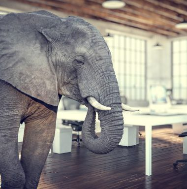 The Elephant in the Room: Integrated Communications Evaluation